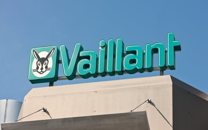 Transformation of Vaillant into a group